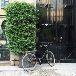 Happy #Sunday #Milano! This day is just perfect for a…